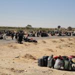 Hasta el 7 de marzo 1.200 malienses han llegado al campamento campamento de tránsito ubicado cerca de la frontera libia y tunecina.