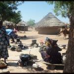 Mujeres hacen leña y fuego, otras cocinan los alimentos en grandes cazuelas en una zona rural de Mali.