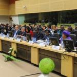 El 3 de marzo de 2015 más de 80 delegaciones debatieron el proceso de recuperación de los países africanos afectados por el peor brote de ébola de la historia.