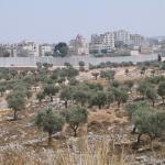 Muro construido por Israel en la ciudad de Belén