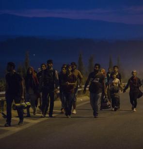 Supervivientes en busca de refugio